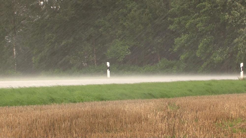 http://www.sturmwetter.de/bilder/250819_2.jpg