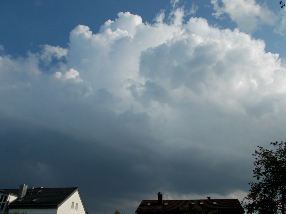 http://www.sturmwetter.de/bilder/260819_3.jpg