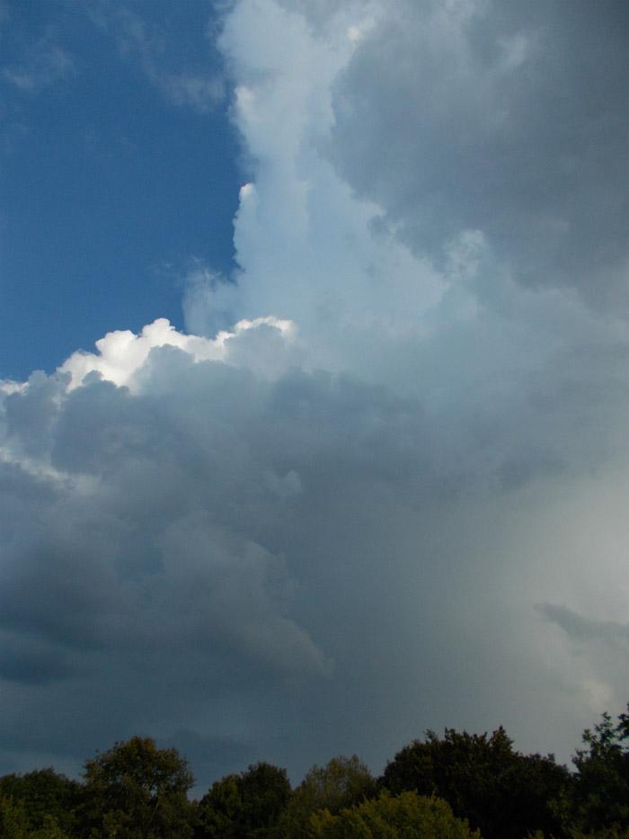 http://www.sturmwetter.de/bilder/260819_6.jpg